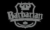 barbarian - software para tienda